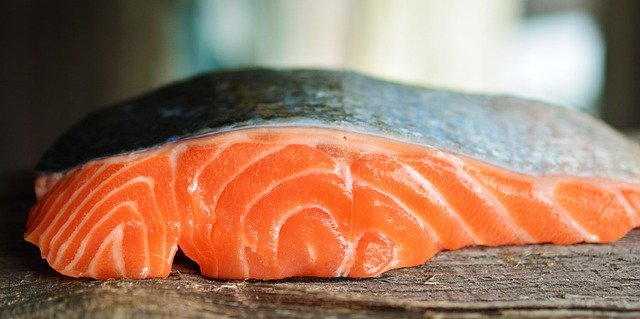 can cats eat salmon skin