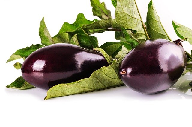 Can Dogs Eat Eggplant?
